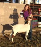 Sinclaire - Showmanship Champion-http://www.arkcountrystore.com/
