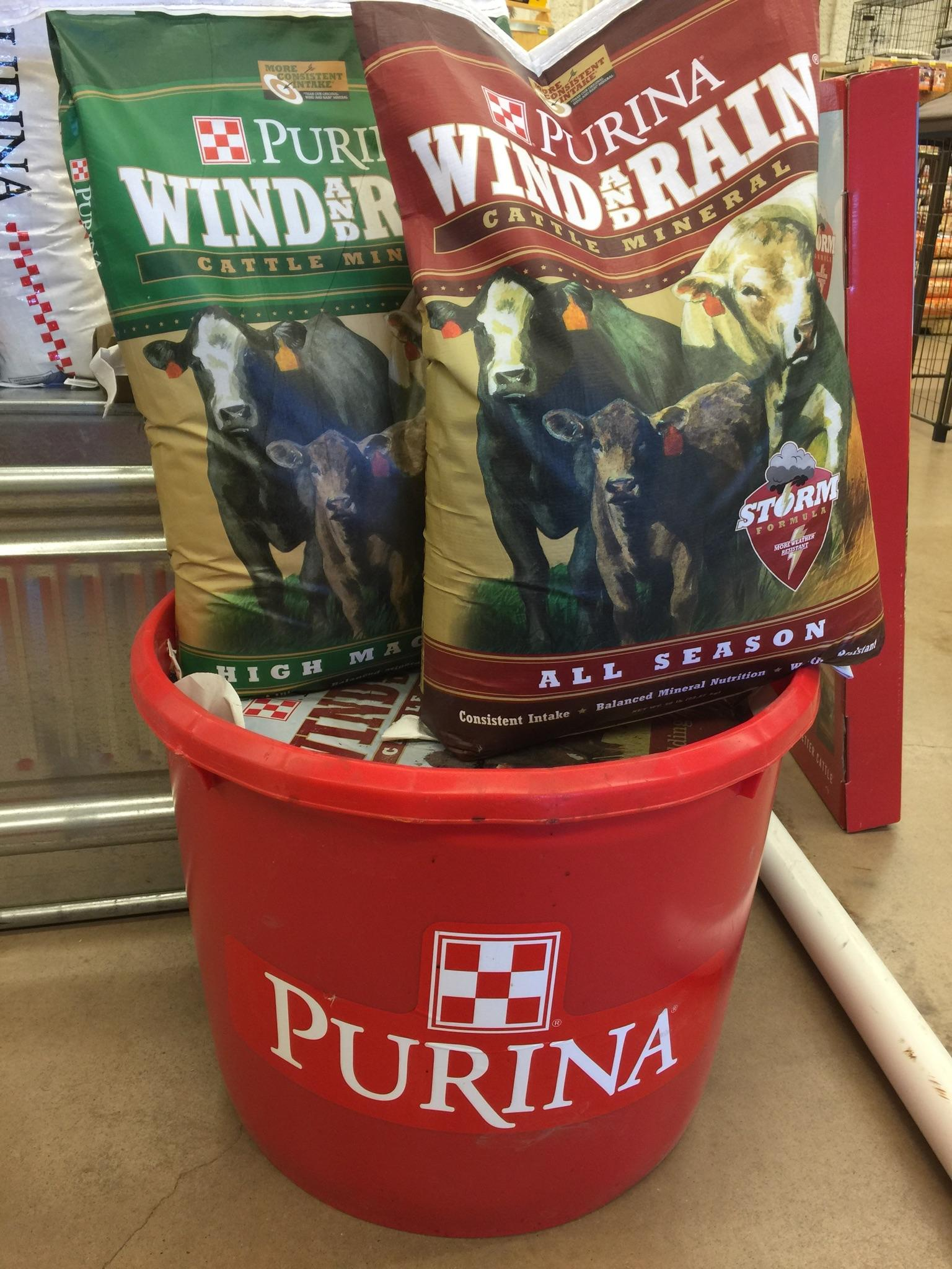 purina wind and rain