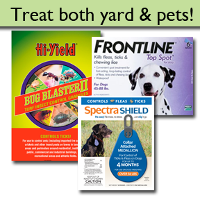Controlling Fleas and Ticks