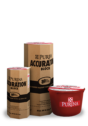 Purina Accuration Hi-Fat Block Available at Kissimmee Valley Feed