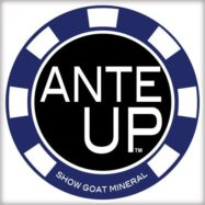 Ante Up Show Goat Mineral