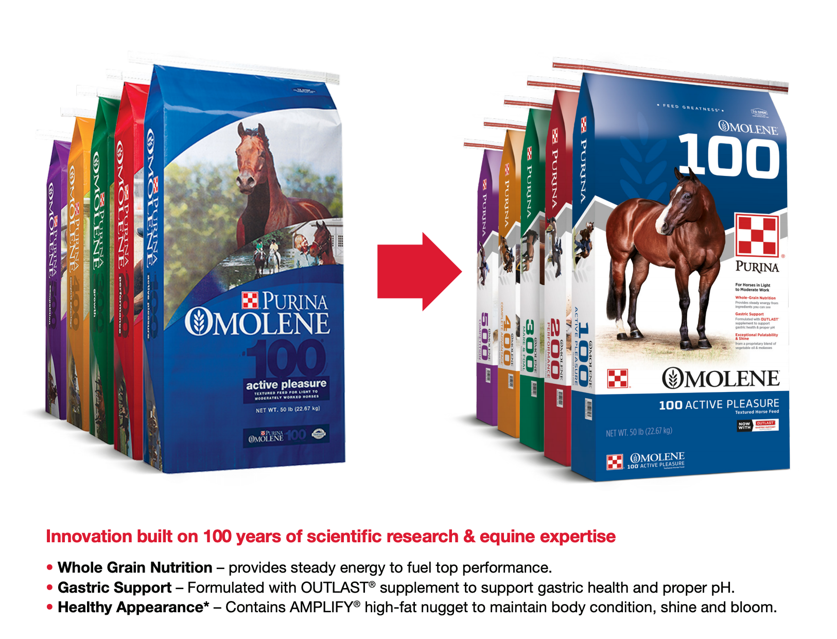 Purina Omolene with Outlast Gastric Supplement