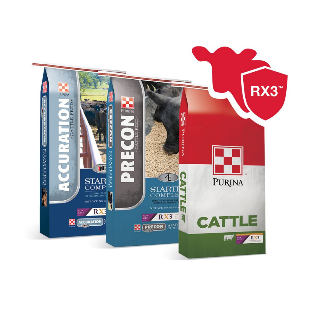 Purina Beef Calf Starters with RX3 Immune Support Technology